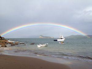 Seacoast Fishing Rainbow