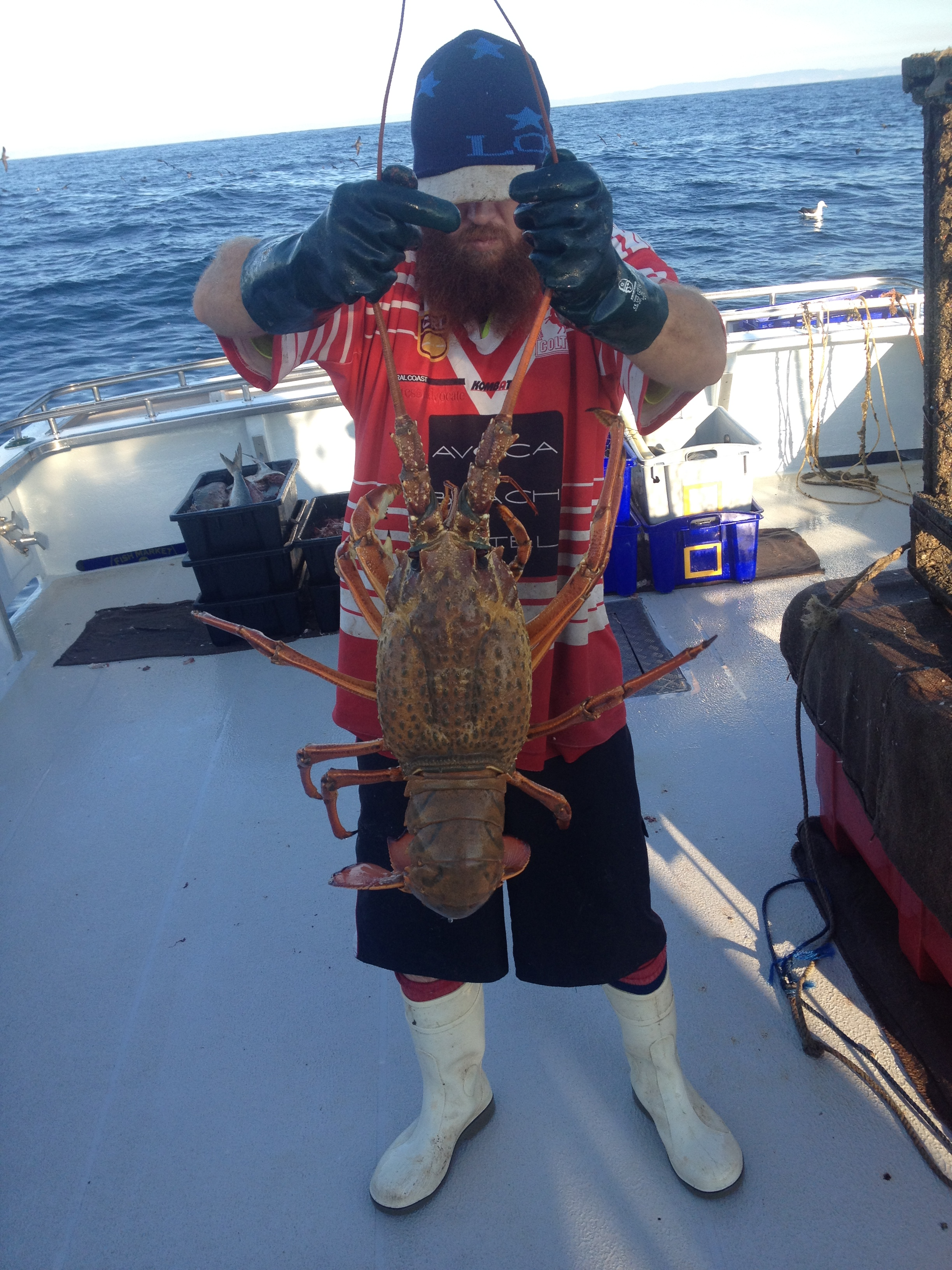 Seacoast Fishing Lobster